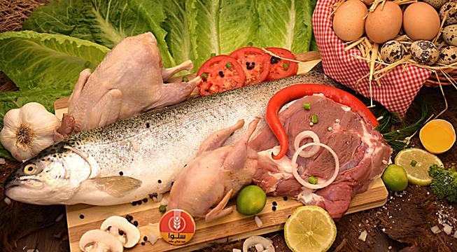 رژیم غذایی سالم + خرید پروتئین سالم