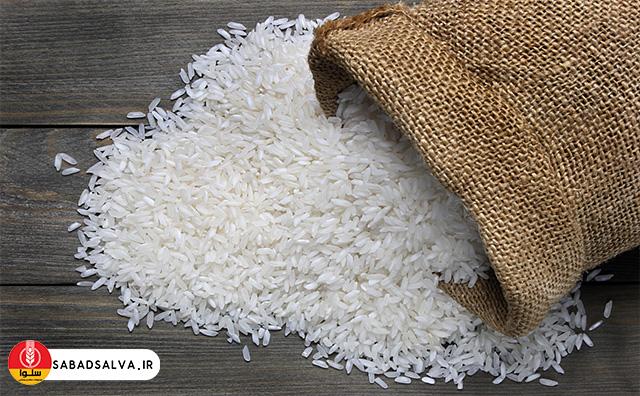 خواص برنج طارم فریدون کنار + فیلم / خرید برنج طارم