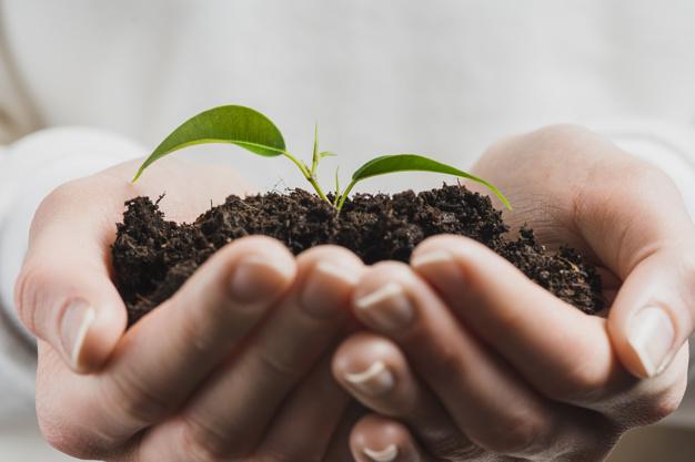 محصول ارگانیک چیست؟!