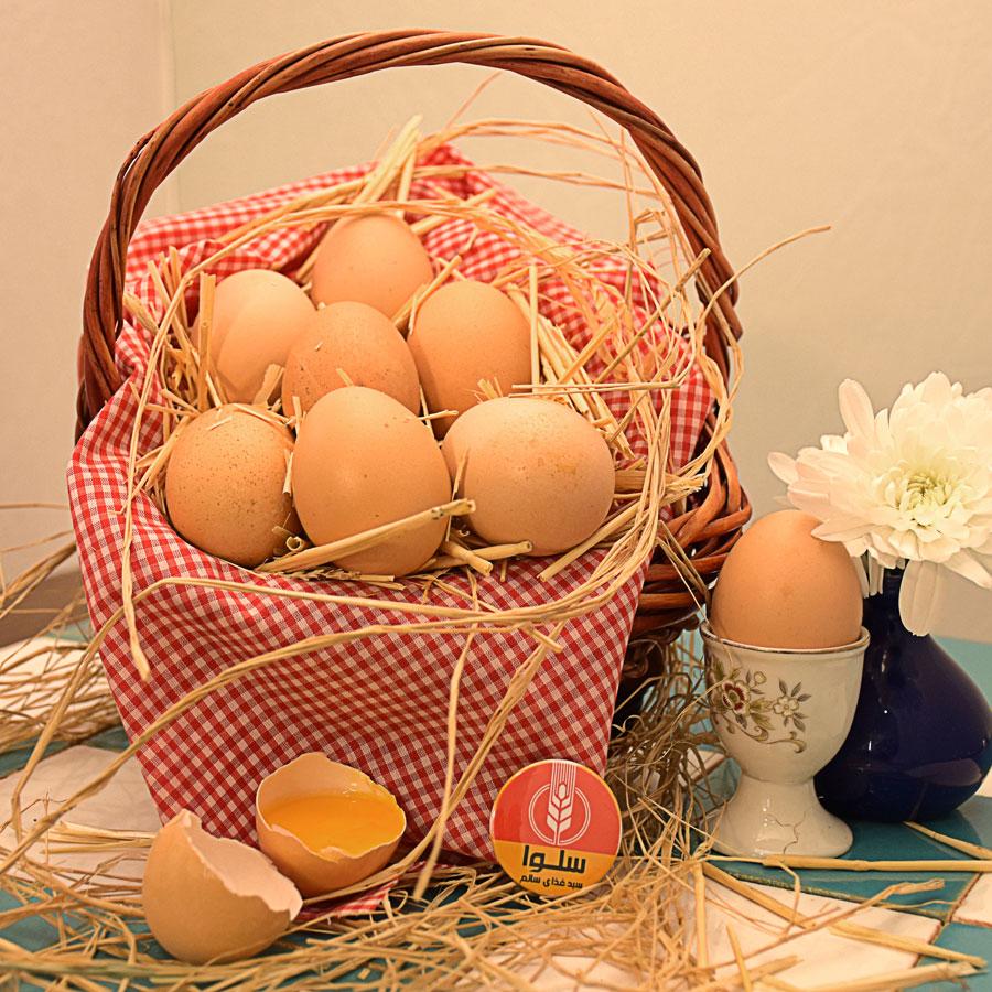 تخم مرغ بومی (9 عدد)