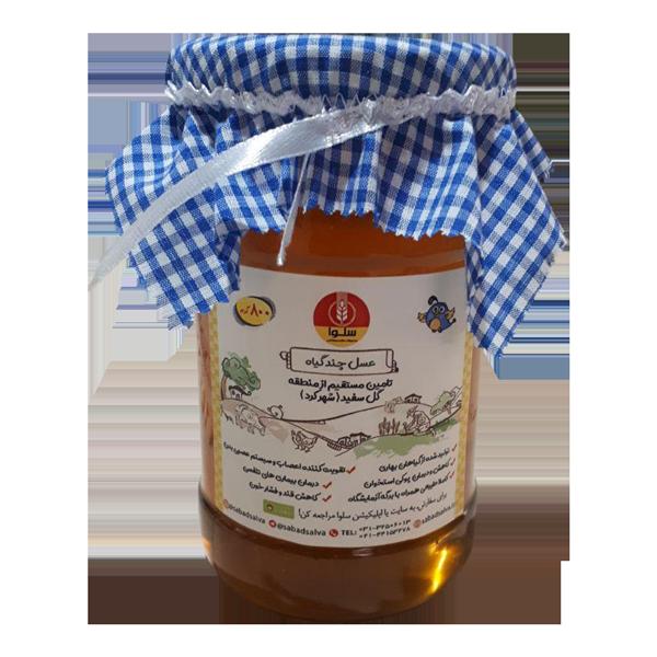 عسل چند گیاه (800 گرم)