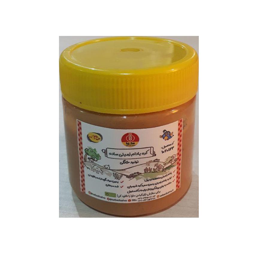 کره بادام زمینی ساده (250 گرم)